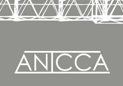 Anicca Engineering